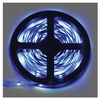 Ecola LED strip STD 14.4W/m 24V IP20 10mm 60Led/m Blue ����� ������������ ����� �� ������� 5�.